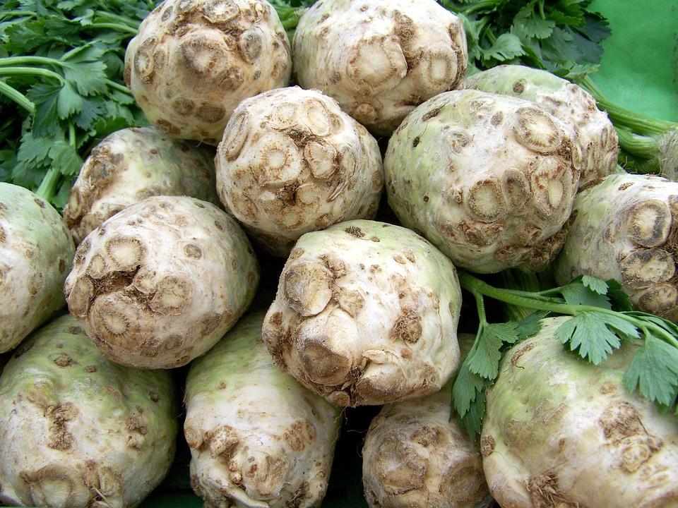 сельдерей-корнеплод
