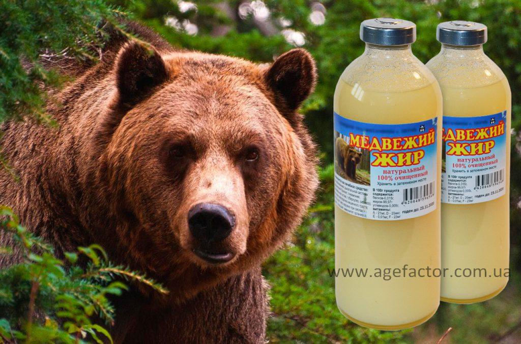 медвежий-жир