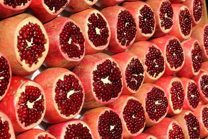 plod-granata