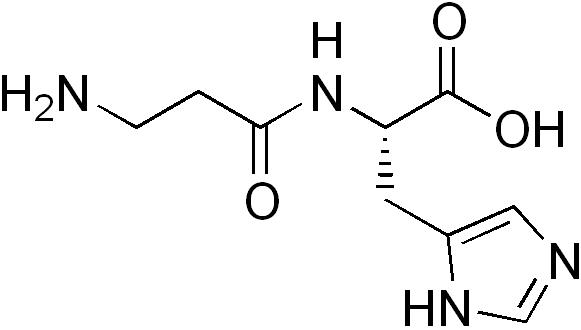 karnozin